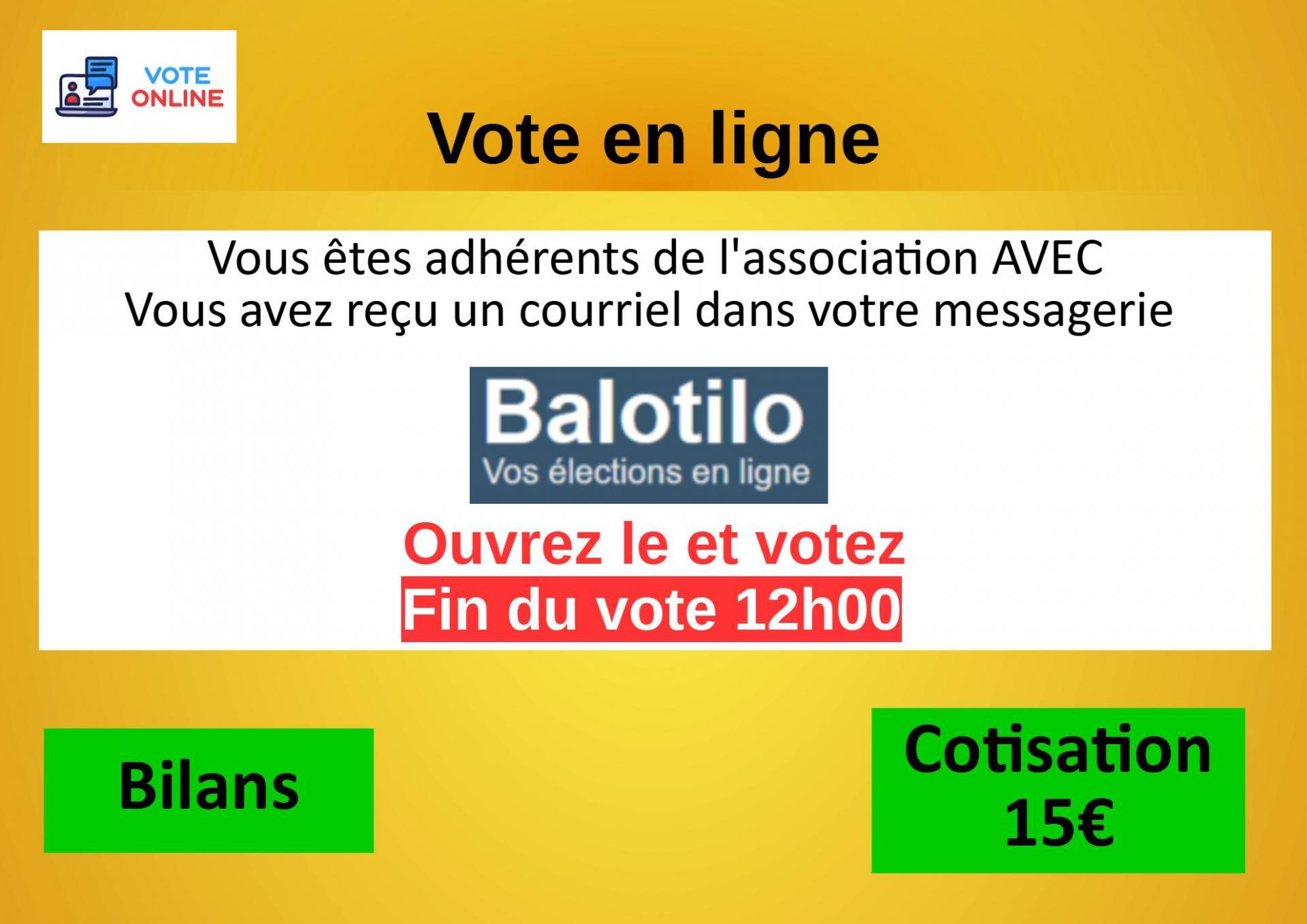 Diapo 17 vote en Ligne